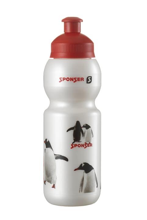 Pingu Bidon Sponser 471925900000 Bild Nr. 1