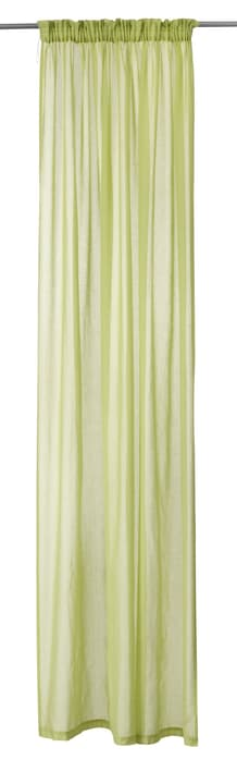 PEPE Tag-Fertigvorhang 430255021860 Farbe Grün Grösse B: 150.0 cm x H: 260.0 cm Bild Nr. 1