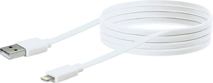 Cavo Apple Lightning 1.5m bianco Schwaiger 613184400000 N. figura 1