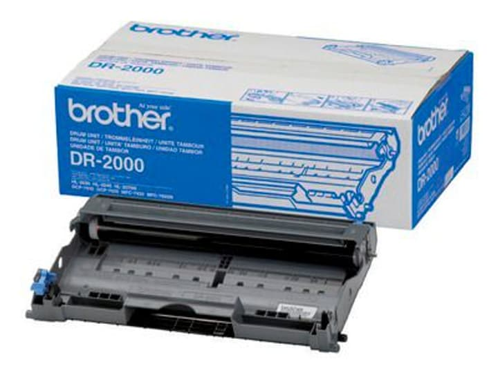 Drum Brother 787518800000 Bild Nr. 1