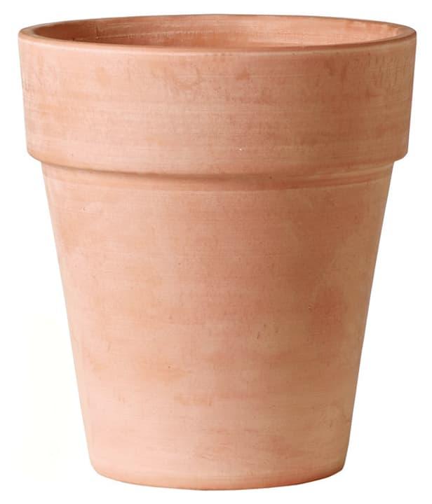 Vaso Alto Deroma 658710100026 Taglio ø: 26.0 cm x A: 28.9 cm Colore Terracotta N. figura 1