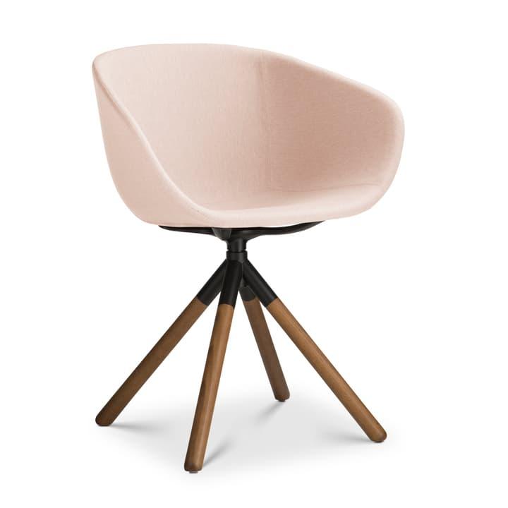 SEDIA Chaise avec accoudoirs 366168000000 Dimensions L: 45.0 cm x P: 58.0 cm x H: 88.5 cm Couleur Beige Photo no. 1