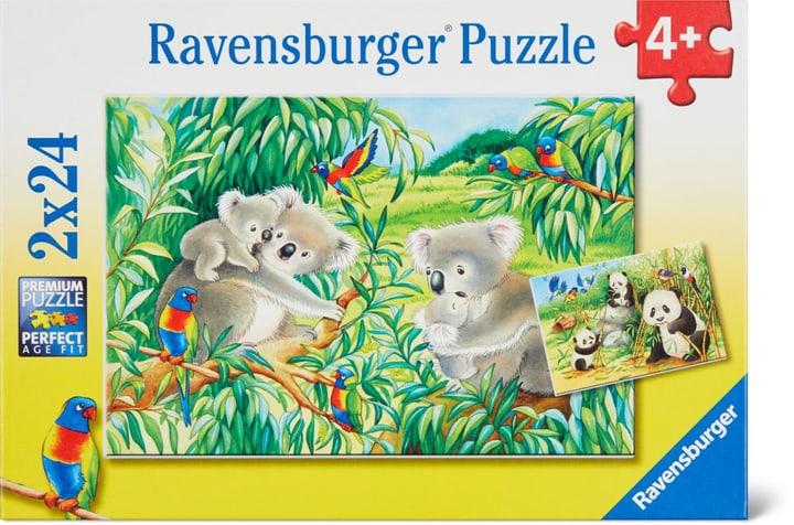 Koalas et pandas Ravensburger Puzzle 748975900000 Photo no. 1