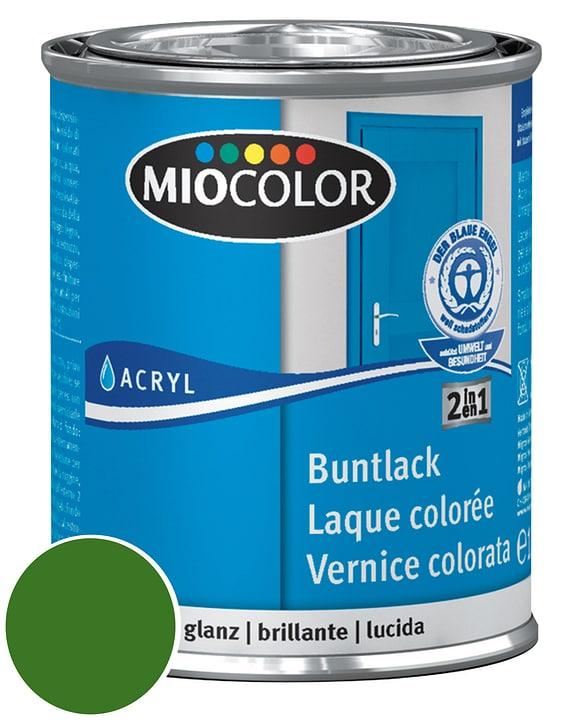 Acryl Vernice colorata lucida Rosso fuoco 375 ml Miocolor 660548100000 Contenuto 750.0 ml Colore Verde foglio N. figura 1