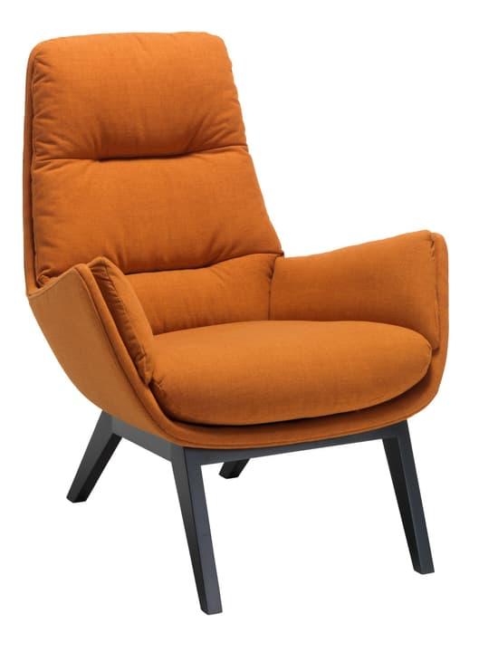 ANDRES Sessel 402441207056 Grösse B: 83.0 cm x T: 87.0 cm x H: 96.0 cm Farbe Rost Bild Nr. 1