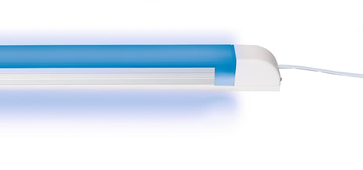Lampe LED bleu 200 mm Steffen 615102000000 Photo no. 1