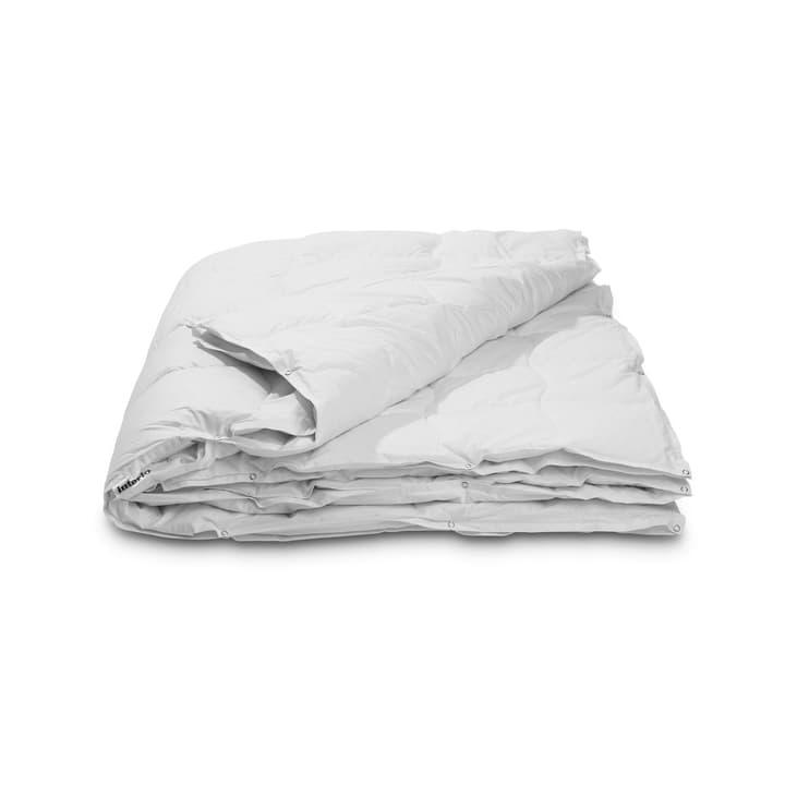 CLASSIC FOUR SEASON Couette double en duvet d'oie en qualité supériore avec protection contre les acariens 376051600000 Couleur Blanc Dimensions L: 210.0 cm x L: 160.0 cm Photo no. 1