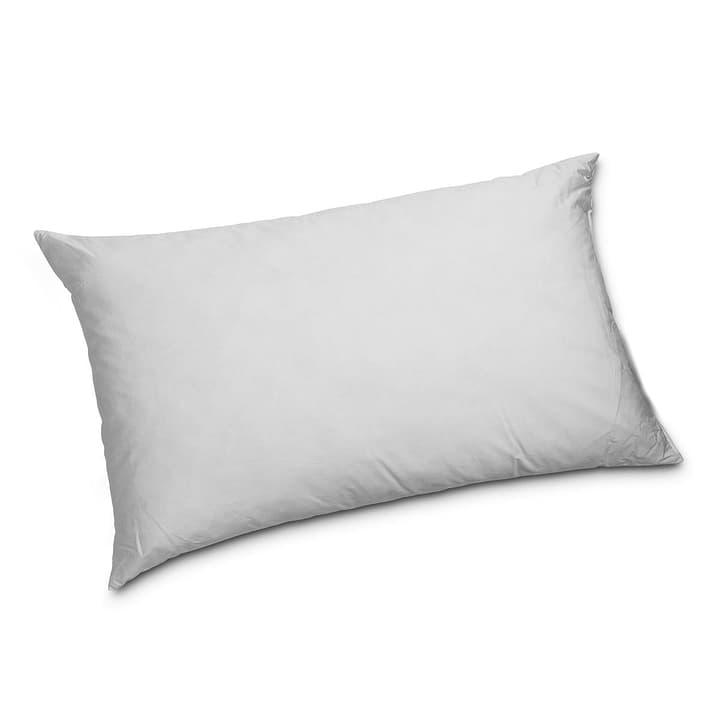 CLASSIC REGULAR Cuscino di piume di qualità superiore con protezione contro gli acari della polvere 376054100000 Colore Bianco Dimensioni L: 65.0 cm x L: 100.0 cm N. figura 1