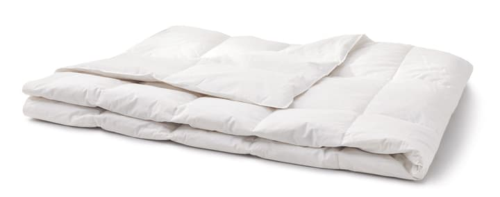 PRIMADAUN MEDIUM Couette 451745212410 Couleur Blanc Dimensions L: 160.0 cm x P: 240.0 cm Photo no. 1
