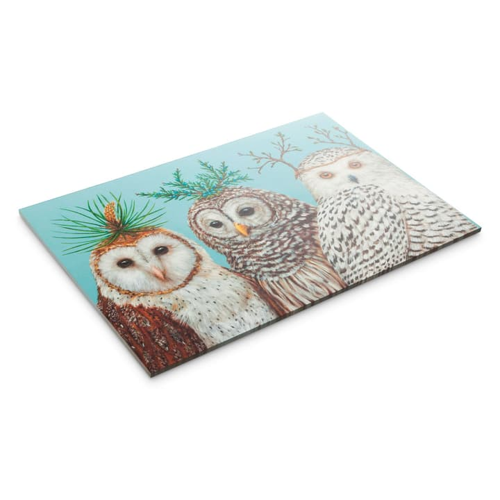 WINTER OWLS Set de table en papier 378086700000 Photo no. 1