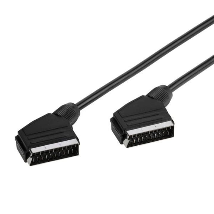 Scart Kabel (1.2m) Video Kabel Vivanco 770800800000 Bild Nr. 1
