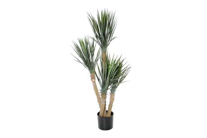 Kunstpflanze Yucca rostrata Do it + Garden 658958800000 Bild Nr. 1