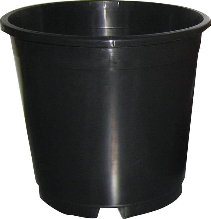 Containertopf 657517000000 Grösse ø: 24.0 cm x L: 24.0 cm x B: 24.0 cm x T: 24.0 cm x H: 22.6 cm Farbe Schwarz Bild Nr. 1