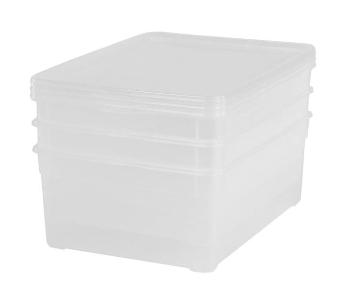 rotho 3er set clear box men shoe kaufen bei do it garden. Black Bedroom Furniture Sets. Home Design Ideas