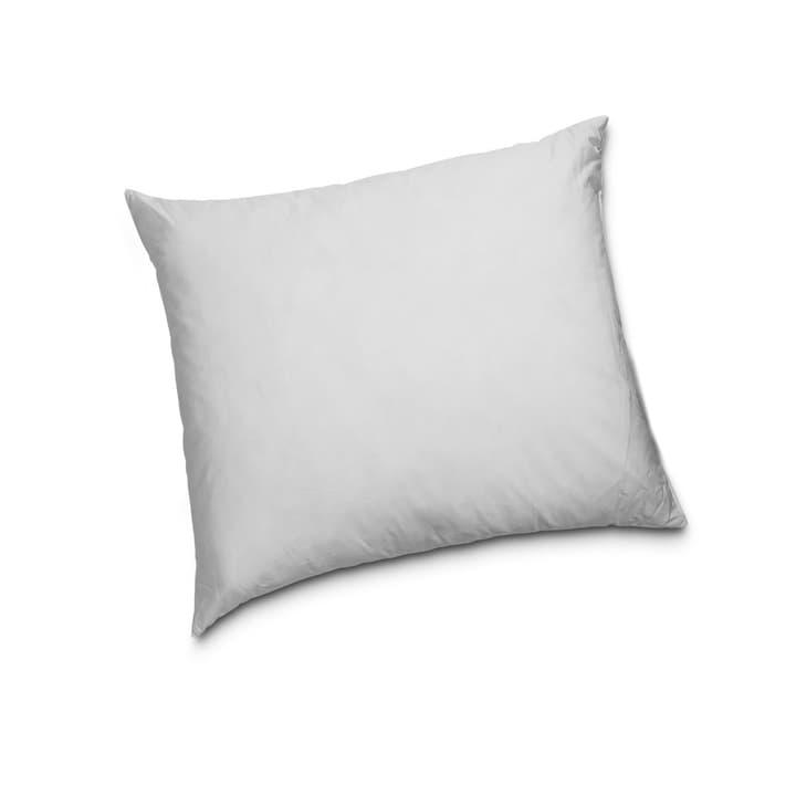 CLASSIC HIGH Cuscino di piume di qualità superiore con protezione contro gli acari della polvere 376053600000 Dimensioni L: 65.0 cm x L: 65.0 cm Colore Bianco N. figura 1