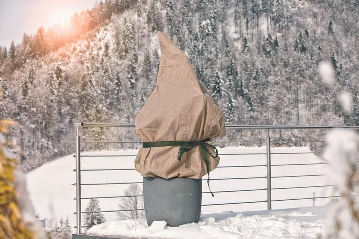 PROTECT 1.5 x 5 m Tessuto per l'inverno Windhager 631245900000 N. figura 1