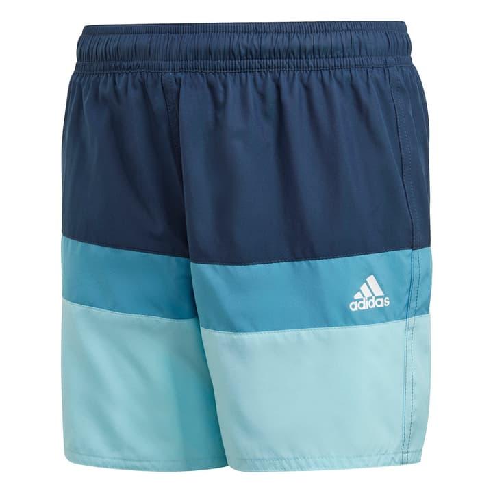 Image of Adidas Boys Colorblock Shorts Badeshorts blau