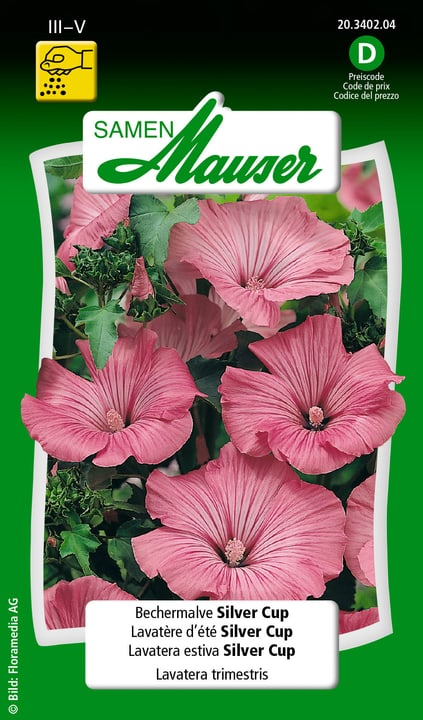 Lavatera estiva Silver Cup Samen Mauser 650104802000 Contenuto 1 g (ca. 50 piante o 4 - 5 m²) N. figura 1