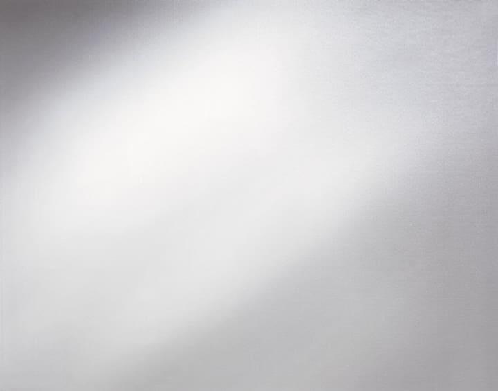 Glasfolien selbstklebend Opal D-C-Fix 665846900000 Bild Nr. 1