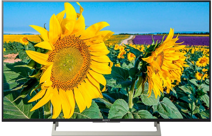 KD-43XF8096 108 cm 4K Fernseher Sony 770343800000 Bild Nr. 1