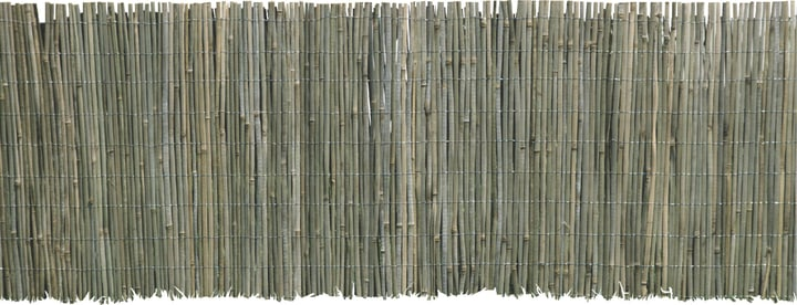 Stuoia in bambù Beach 300 x 100 cm Windhager 631127600000 N. figura 1