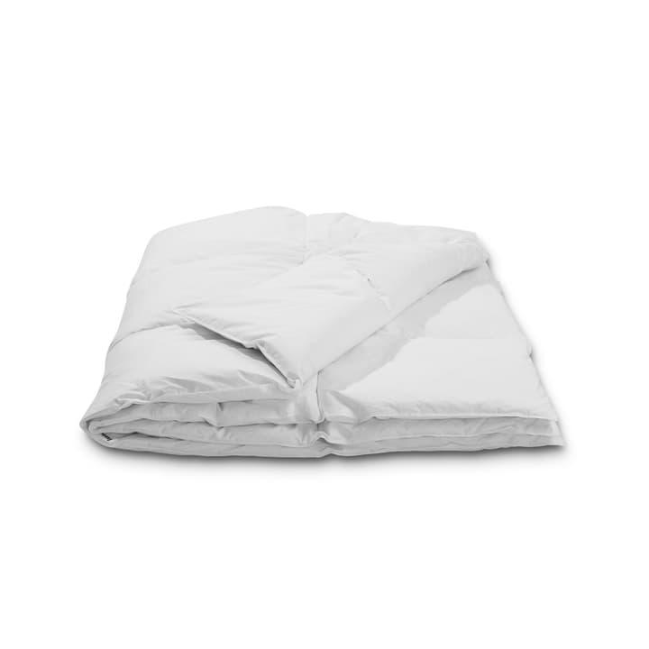 BASIC WARM Couette en duvet d'oie 376055800000 Dimensions L: 240.0 cm x L: 160.0 cm Couleur Blanc Photo no. 1