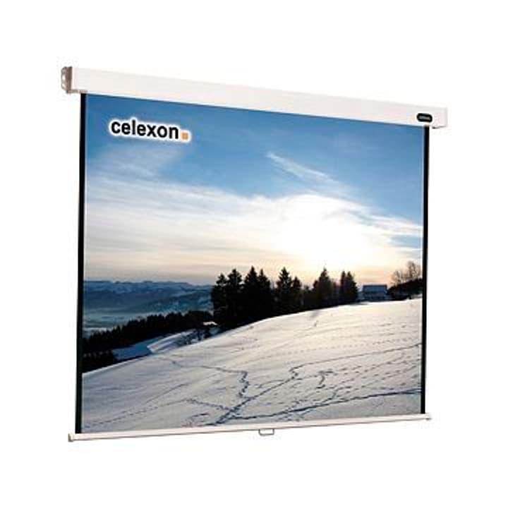 Rollo Professional Écran manuels 4:3 300x225 Celexon 785300123550 Photo no. 1