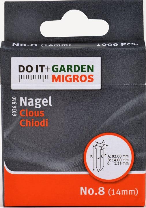 Chiodi No.8 14mm Do it + Garden 603694000000 N. figura 1