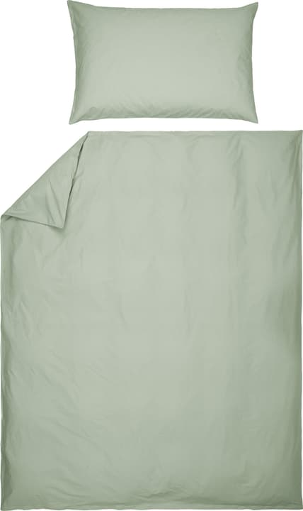 ROMANO Taie d'oreiller en percale 451192610961 Couleur Vert clair Dimensions L: 100.0 cm x H: 65.0 cm Photo no. 1