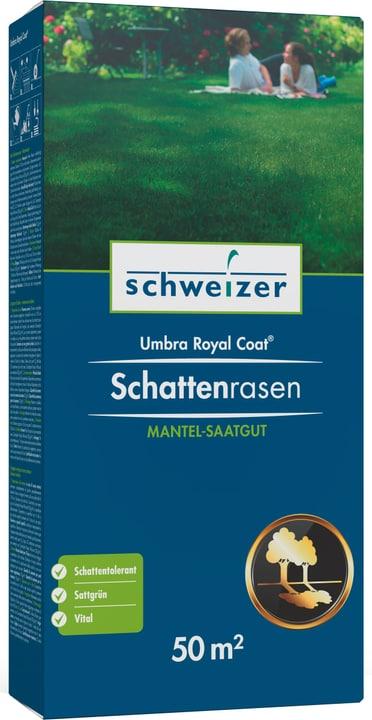 Schattenrasen - Umbra Royal Coat 50 m² Eric Schweizer 659290800000 Bild Nr. 1
