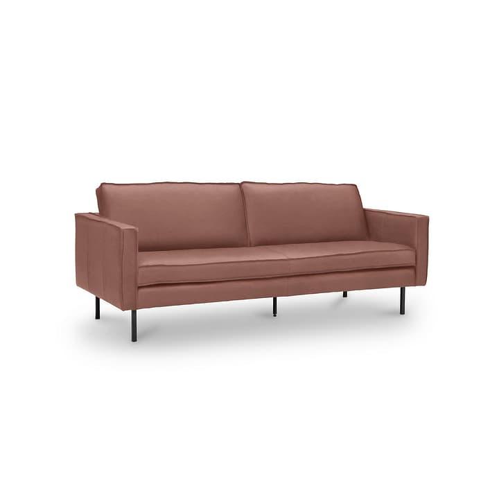 TEXADA II Corrida divano in pelle da 3 posti 360051471006 Dimensioni L: 196.0 cm x P: 95.0 cm x A: 61.0 cm Colore Tabacco N. figura 1