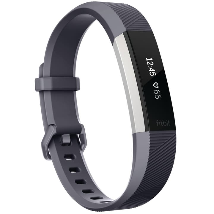 Alta HR Grey Large Fitbit 785300131095 N. figura 1