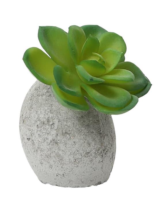 Mii Art Fiore, Terracotta  1 Do it + Garden 656548400003 Taglio L: 6.0 cm x P: 6.0 cm x A: 8.0 cm N. figura 1