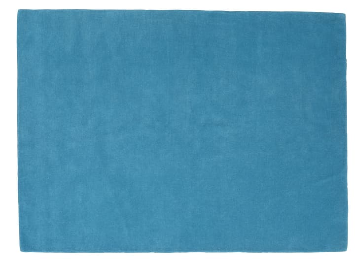 FABIENNE Tapis 411979012044 Couleur turquoise Dimensions L: 120.0 cm x P: 170.0 cm Photo no. 1