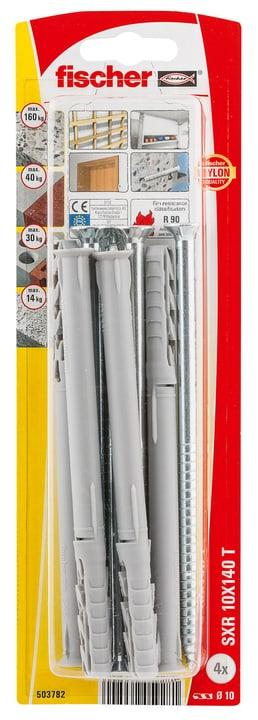 Langschaftdübel SXR 10 x 140 inkl. Schrauben fischer 605442100000 Bild Nr. 1