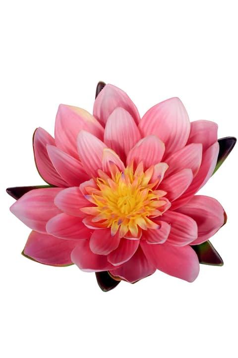 Nénuphar artificiel rose vif flottant Do it + Garden 658959700021 Colore Rosa fucsia Taglio L: 12.5 cm x L: 12.5 cm x A: 6.0 cm N. figura 1