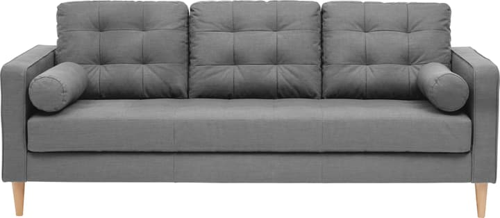 SEIFERT 3er-Sofa 405711630380 Farbe Grau Grösse B: 204.0 cm x T: 81.0 cm x H: 81.0 cm Bild Nr. 1