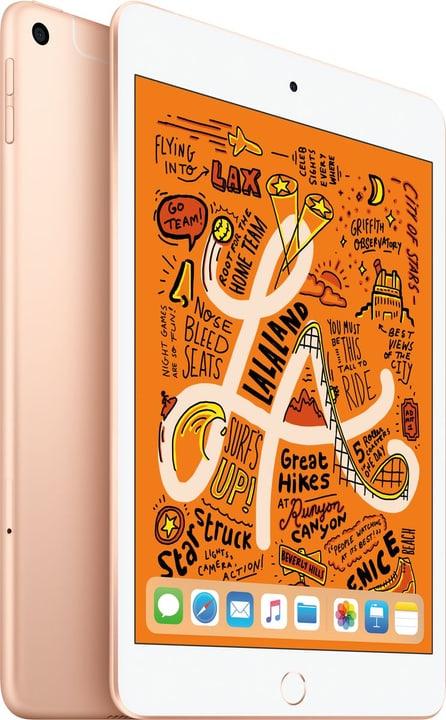 iPad mini 7.9 LTE 256GB gold Apple 798484700000 Bild Nr. 1