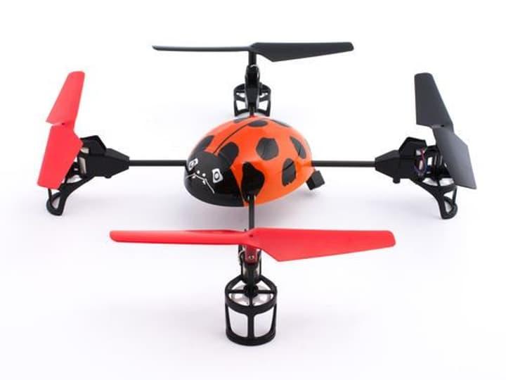 Käfer Drohne Orange Mini Quad 76760330000012 Bild Nr. 1