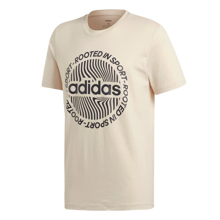 CIRCLED GRAPHIC TEE T-shirt pour homme Adidas 464223700313 Couleur écru 2 Taille S Photo no. 1