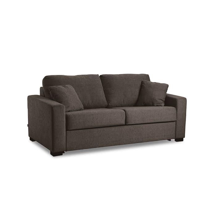 GEORGE Nancy canapé-lit à 2 places 360208100000 Dimensions L: 120.0 cm x P: 195.0 cm Couleur Brun Photo no. 1
