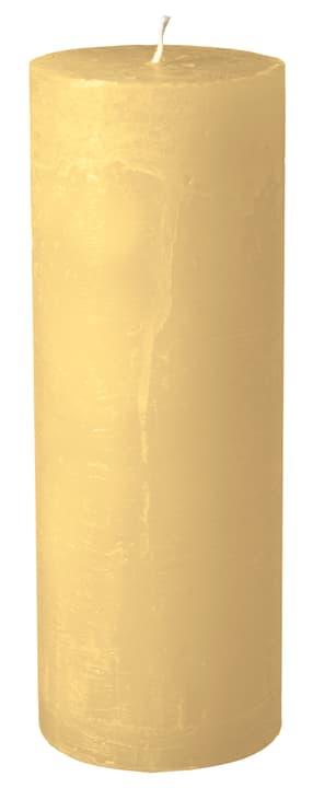 BAL Zylinderkerze 440582900812 Farbe Ecru Grösse H: 22.0 cm Bild Nr. 1