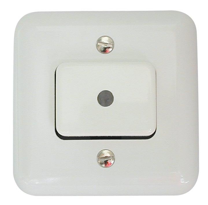 AP Leucht-Impuls-Schalter SCHJ11 Mica 612139500000 Bild Nr. 1