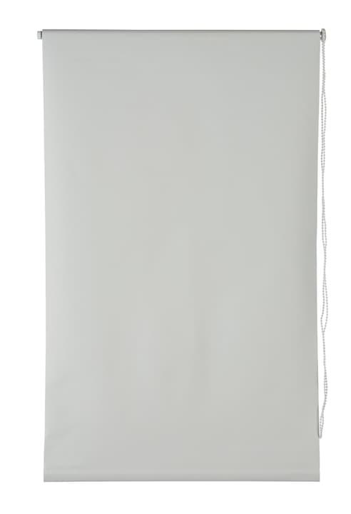 BLACKOUT Rollo 430731704010 Farbe Weiss Grösse B: 40.0 cm x H: 130.0 cm Bild Nr. 1