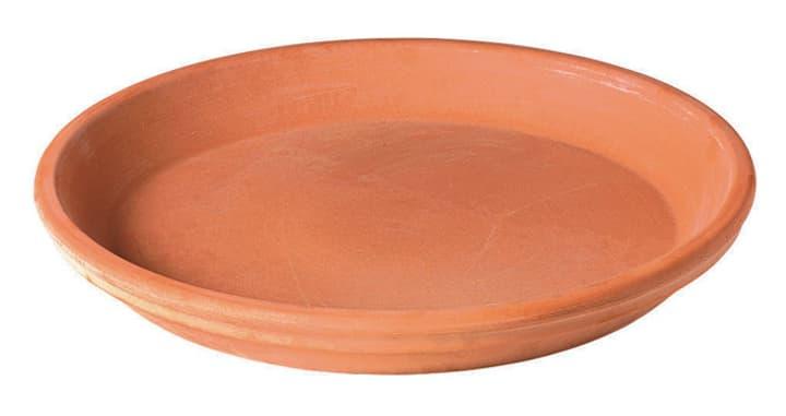 Sottovaso in terracotta Deroma 659154800000 Taglio ø: 35.9 cm x A: 4.3 cm Colore Beige N. figura 1