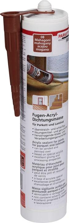 Mastic d'étanchéité acrylique 310 ml 641037400000 Photo no. 1