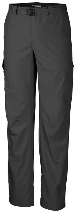 Silver Ridge Pantalon de trekking pour homme Columbia 473108700386 Couleur antracite Taille S Photo no. 1