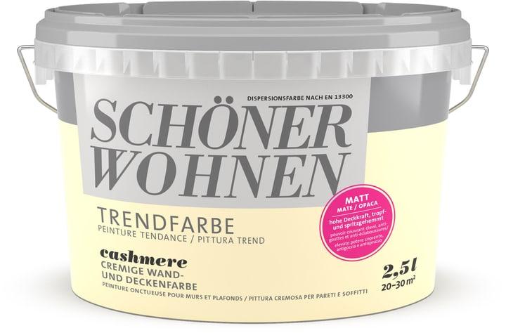 Vernice di tendenza opaca Cashmere 2.5 l Schöner Wohnen 660907800000 Colore Cashmere Contenuto 2.5 l N. figura 1