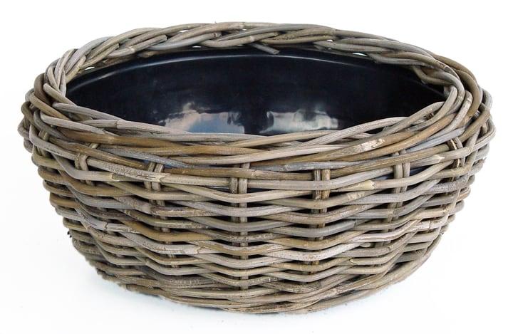 Pflanzenschale Dry Pot 656127800032 Grösse ø: 32.0 cm x H: 14.0 cm Farbe Grau Bild Nr. 1