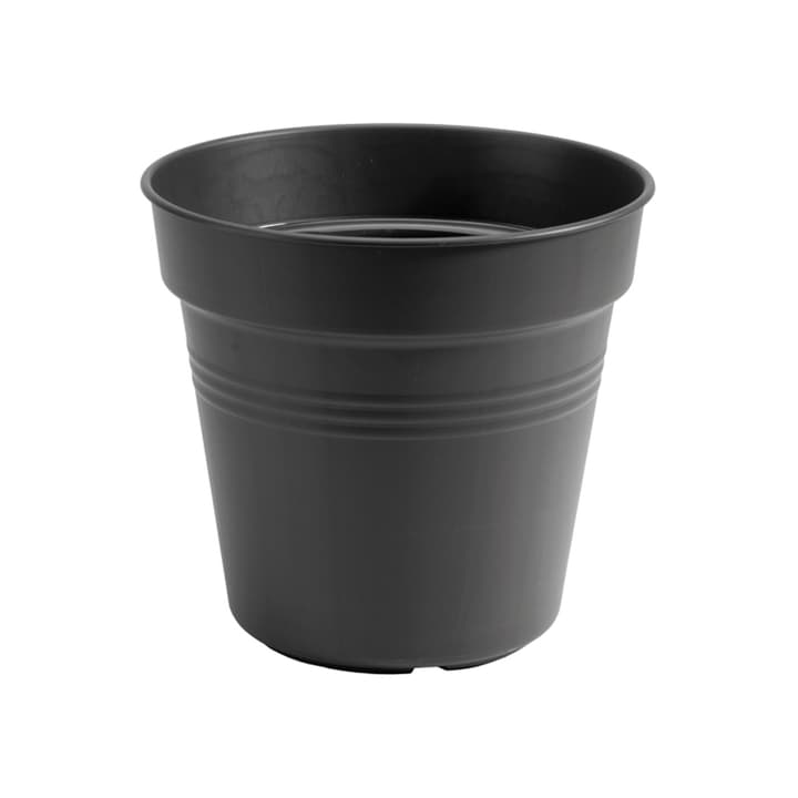 Green Basics Growpot 659627100000 Taglio ø: 24.0 cm x A: 22.0 cm Colore Nero N. figura 1
